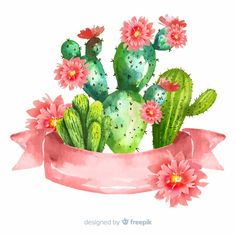 Watercolor cactus banners with blank banner Free Vector Watercolor Cactus, Cactus Drawing, Watercolor Art, Doodle Background, Plant Background, Background Designs, Cactus Doodle, Cactus Art, Types Of Cactus Plants