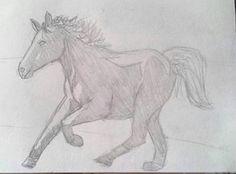 #illustration #ilustração #sketch #sketchbook #draw #drawing #desenho #horse #cavalo