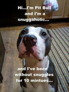 So true!! Big snuggle monsters ❤️