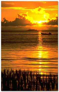 Chuuk, Micronesia - Going here next year with the bf! South Pacific, Pacific Ocean, Beautiful World, Beautiful Places, Wake Island, Federated States Of Micronesia, Freedom Rings, Ill Fly Away, Peace Corps