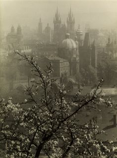 josef-sudek-view-of-prague-from-the-seminarska-garden.jpg (346×470)