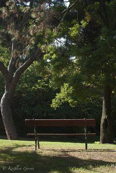 """""""Banco en el parque"""" Fotografía tomada en el parque El Capricho, Madrid. España. 2011."""