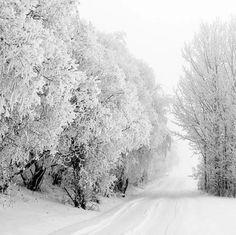 snowland roadway