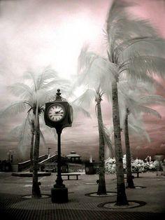 Kim Hambor, Fine Art Photographer Infrared Gallery