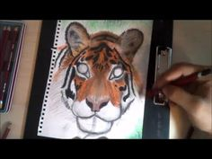 Dremico's Art Channel:  Tools of the trade Derwent Pastel Pencils Pencil...