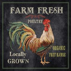 Laurel Foundry Modern Farmhouse 'Farm Fresh Rooster' by Jean Plout Graphic Art on Wrapped Canvas #affiliate #chickens #farmhousedecor