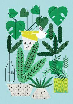 House Plants - Maizle Illustration