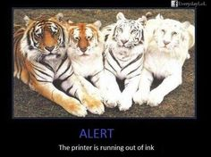 that's how my printer tells me