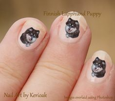 Finse Lappenhond Nail Art nagel Stickers Puppy stickers