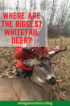 Most of us choose to hunt whitetails in our home state, but where are the biggest whitetail deer? If you just travel one or two states away you will see a definite difference in the deer population.#hunting #hunters #huntmexico #huntingseason #huntinglife #monsterbuck #huntingislife #huntergatherer