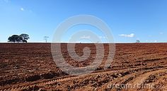 Photo about Soil preparation is one of the most important steps to having a successful cultivation. Image of plant, nature, drained - 98947342