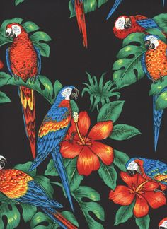 Tropical Parrots Bright 1 Fat Quarter BIRDS100 Cotton Fabric Quilt Quilting | eBay