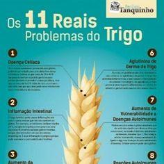 Fizemos um infográfico exclusivo falando os 11 reais problemas do trigo (e não é só do glúten que estamos falando). . Confira em http://ift.tt/2ddVzCa .  #paleo #primal #lowcarb #lchf #cetogenica #keto #atkins #dieta #emagrecer #vidalowcarb #paleobr #comidadeverdade #saude #fit #fitness #senhortanquinho #trigo #barrigadetrigo