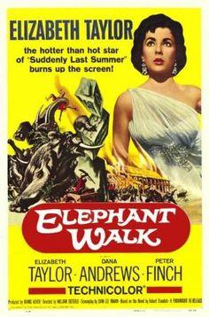 La senda de los elefantes - ED/DVD-791(73)/DIE