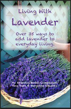 Lavender Book Pre-Order