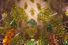 Bromelliad Detail, Studio gh Michele Gutlove