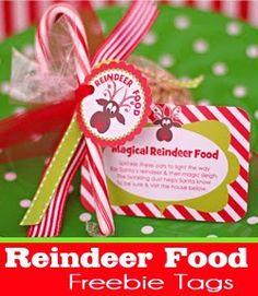 Amanda's Parties TO GO: FREE Reindeer Food Tags