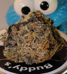 I got You are GIRL SCOUT COOKIES.! Which Strain Of Weed Are You?