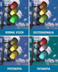 Determine whether you have a color vision deficiency or not.Only people with perfect color vision can read these 8 words without hesitation! Different Types Of Colours, Basic Colors, Optometry Office, Eye Facts, Color Vision, Blinde, Mind Tricks, Science Fair Projects, Color Theory