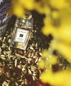My New favorite: Jo Malone London   Mimosa & Cardamom #NewBohemian