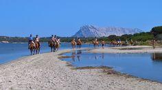 La Cinta è un circolo ippico punto di riferimento a San Teodoro, in provincia di Olbia e vicino a Porto Rotondo e Porto Cervo, per quanto riguarda corsi di equitazione per principianti e le passeggiate a cavallo sulla spiaggia.