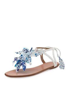 AQUAZZURA . #aquazzura #shoes #flats