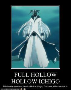 FULL HOLLOW HOLLOW ICHIGO