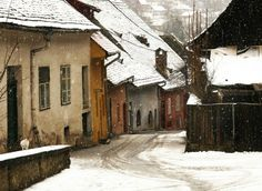 A colorful street in Sighisoara, a beautiful medieval town (Romania). Snow Scenes, Fairy Land, Old World, Romania, Winter Wonderland, To Go, Old Things, Landscape, Architecture
