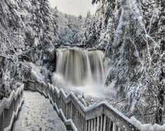 Black and White Winter Scenery Wallpaper