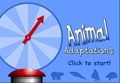 Computer Science: Animal Adaptations: Shows how different organisms have to change to be better suited for their environement. This would be a good activity for Smart Board use or a computer activity. Science Resources, Science Lessons, Science Education, Science Activities, Life Science, Science Ideas, Physical Education, Health Education, Forensic Science