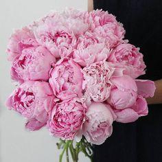 pretty pink peony bouquet