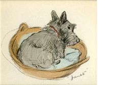 Baby Scottie Dog In a Basket Hush Now Print Nap Time Sleepy Scottish Terrier Reproduction Print. $7.75, via Etsy.