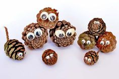 Pine Cone with googly eyes