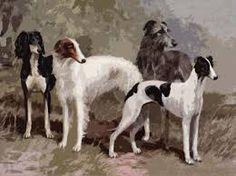 Saluki, Borzoi, Irish Wolfhound and Greyhound - unknown artist
