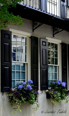 Gorgeous window boxes full of hydrangeas, and good looking shutters in Charleston, South Carolina. How to grow hydrangeas in pots/containers: www.c… Gorgeous window boxes full of Exterior Paint, Exterior Design, Black Exterior, Black Shutters, House Shutters, Rustic Shutters, Window Shutters Exterior, Window Box Flowers, Window Planters