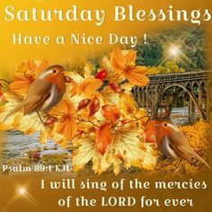 Saturday Blessings, Psalm 89:1- Have a Nice Day!