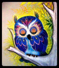 Malované Kameny, Mláďata Sov, Ptáčkové