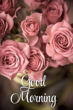 Good Morning Flowers, Good Morning Picture, Morning Pictures, Morning Wish, Good Morning Quotes, Morning Messages, Morning Greeting, Good Morning Beautiful Images, Background Images Wallpapers