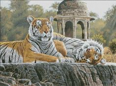 Temple Tigers [GAYFORD152] - $19.00 : Heaven And Earth Designs, cross stitch, cross stitch patterns, counted cross stitch, christmas stockings, counted cross stitch chart, counted cross stitch designs, cross stitching, patterns, cross stitch art, cross stitch books, how to cross stitch, cross stitch needlework, cross stitch websites, cross stitch crafts