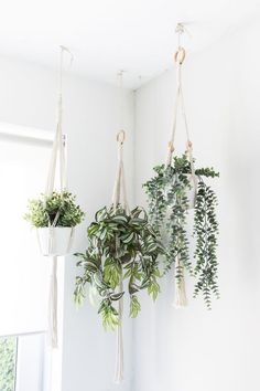 37 Indoor Hanging Plants Ideas To Decorate Your Home hanging plants indoor ideas; The post 37 Indoor Hanging Plants Ideas To Decorate Your Home appeared first on Vegan. Window Hanging, Diy Hanging, Hanging Plant Wall, Plant Wall Decor, Hang Plants On Wall, House Plants Hanging, Garden Planters, Plants On Walls, Hanging Wall Planters Indoor