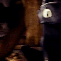 Hahahaha! Toothless looks like he's about to jump on you. xD