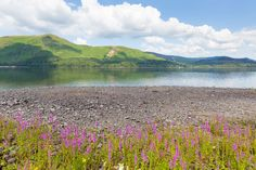 Friday is here!! Enjoy our lovely 'Pic of the Week' (Maiden Moor, Lake District) and have a great weekend from everyone at Penny Price Aromatherapy.