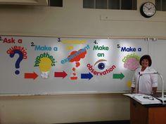 Middle School Science Bulletin Boards   Hawthorne Elementary School