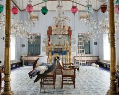 Surrey-based photographer Karen Knorr has digitally composed some fascinating and interesting portraits of animals in places of rich heritage—such as museums, palaces, tombs, or sacred spaces.