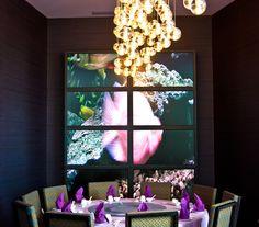 R5 Night Club Lounge in Niagara Falls, ON