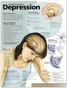 Understanding Depression Chart Good way to breakdown the brain, symptoms, etc