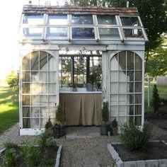 Greenhouse made of repurposed windows.