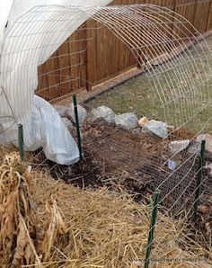 Building simple and inexpensive supports for beans and cucumbers