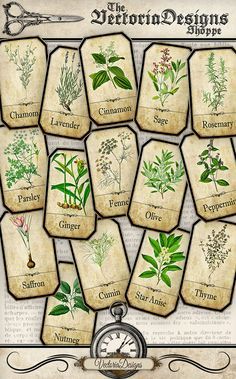 Herbal Apothecary Labels - a collection of 30 different herbal bottle and jar labels for your kitchen.