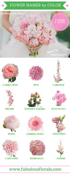 FLOWER NAMES BY COLOR! 2017 wedding trends! . Your #1 source for wholesale DIY wedding flowers! #PINK #diyflowers #weddingflowers #weddinggreenery #weddingtrends #pinkflowers #blushflowers #fuchsiaflowers #diywedding #weddingcolors #flowercolors
